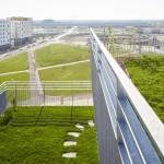 B.R.O.T. Aspern (© Daniel Nuderscher) Dachterrasse mit Blick auf Hannah-Arendt-Park